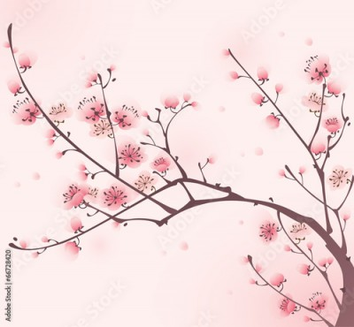 Fototapeta Oriental style painting, cherry blossom in spring