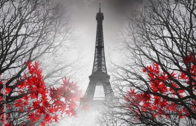 Naklejka Eiffel Tower in Paris - autumn picture