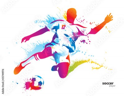 Fototapeta Soccer player kicks the ball. The colorful vector illustration